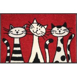 wash+dry Design-Three Cats-50/75