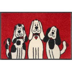wash+dry Design-Three Dogs-40/60