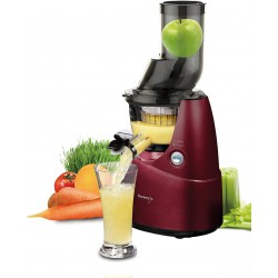 ESTRATTORE WHOLE SLOW JUICER SV BASE